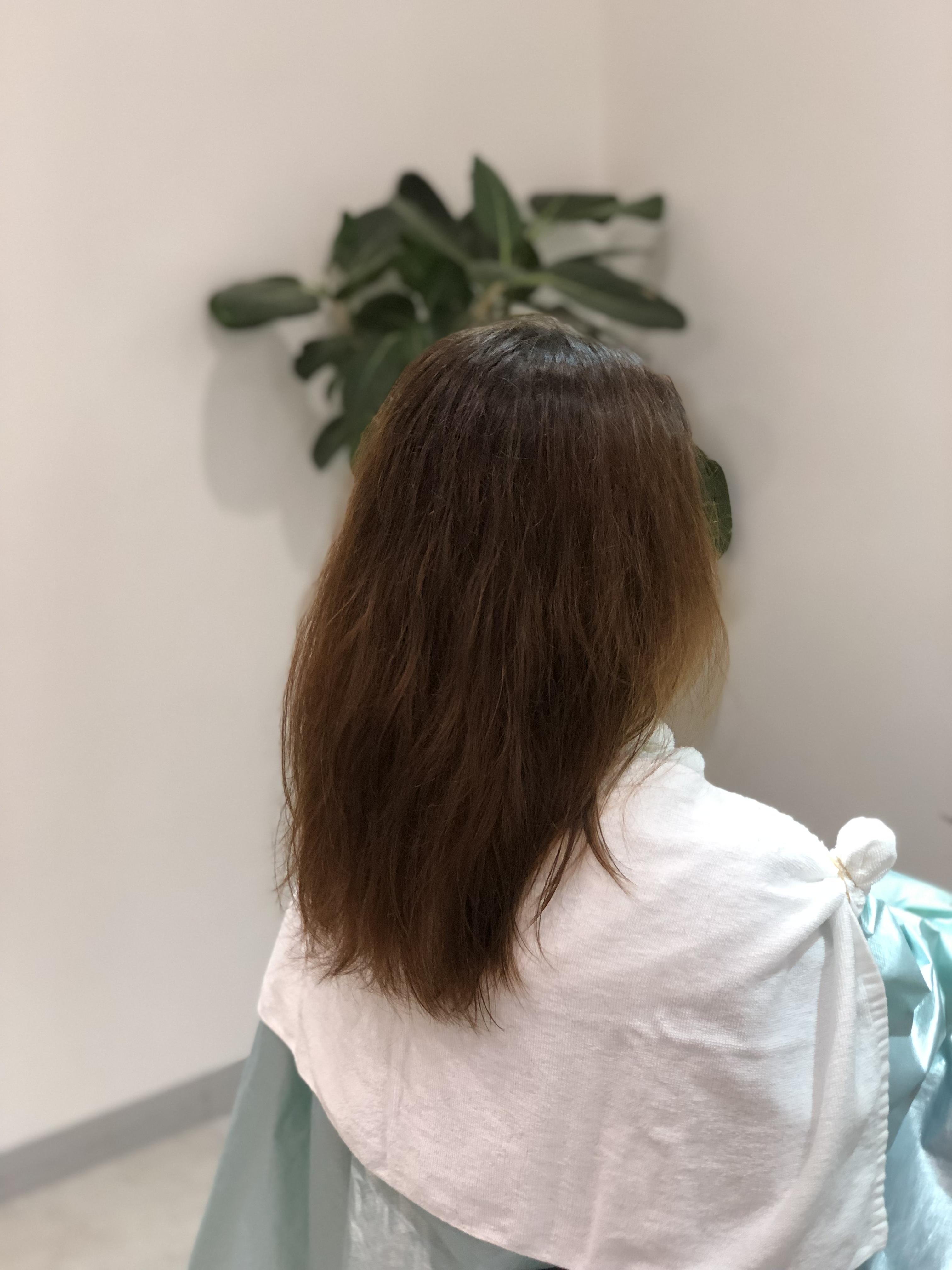 髪質改善ヘアーエステ